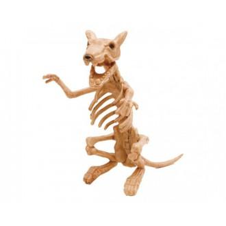 Halloween, strašidelné kostýmy - Kostra Krysa