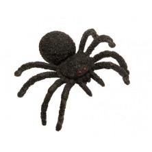 Velká tarantule s červenýma očima