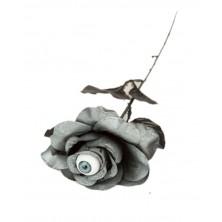 Černá růže s okem