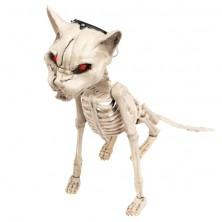 Kostra kočky svítící